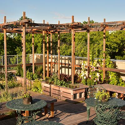 DEP Horticulture urbaine - Diplôme d'Études Professionnelles
